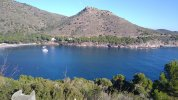 cameringo_20201122_130800.jpg