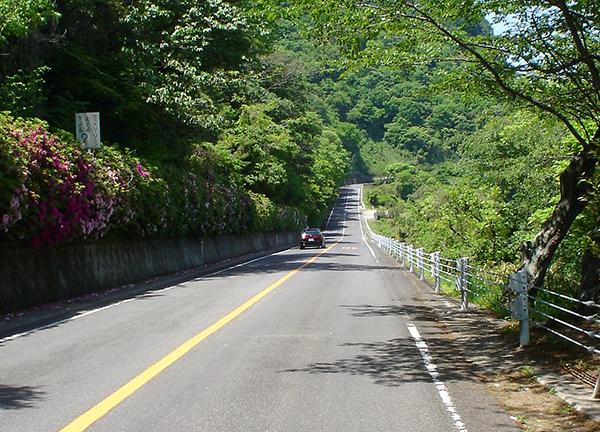 Carretera japonesa. El motociclisme al món: El Japó