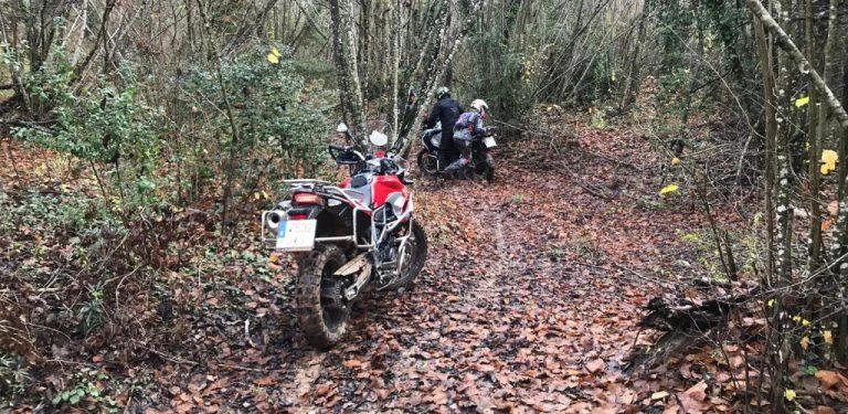 Com dominar al màxim la meva moto trail en OffRoad?